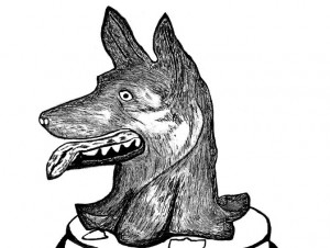 Wolfs head cropped