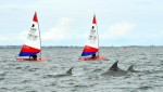 Topper-world-Dolphins-cropped1-150x852